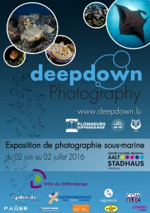 Deepdown - Affiche Expo